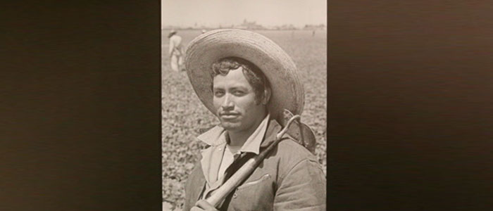 the bracero program essay From a farm owner to a bracero essay  the bracero program was established after the onset of world war ii when california was faced with labor shortage (mitchell.