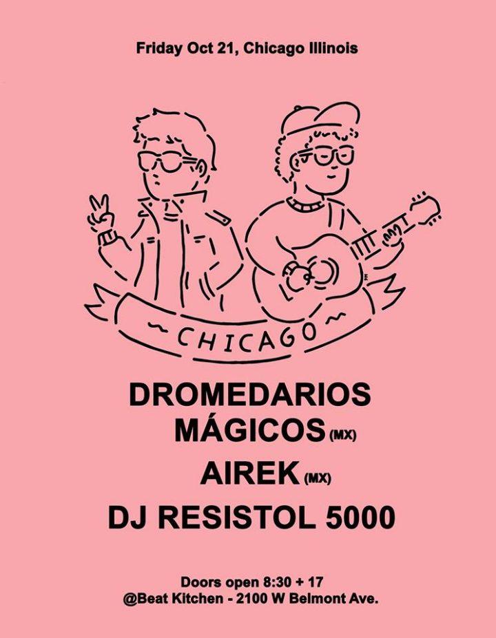 dromedarios